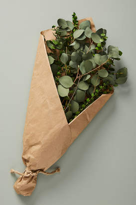 Anthropologie Dried Eucalyptus Bouquet By in Green