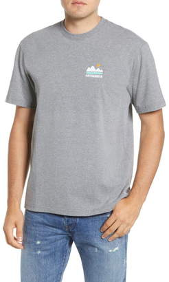 Patagonia Fed Up with Melt Down Graphic Responsibili-Tee T-Shirt