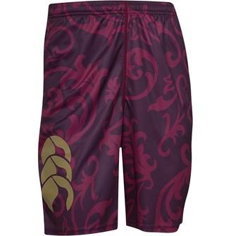 Canterbury of New Zealand Mens VapoDri Poly Shorts Potent Purple