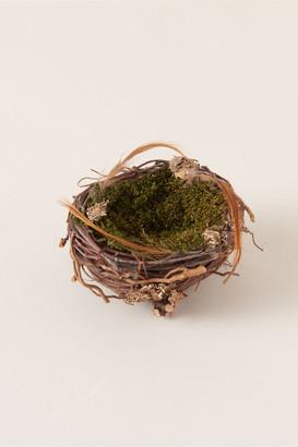 HomArt Small Wrens Nest