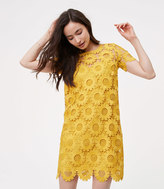 LOFT Petite Sunflower Lace Dress