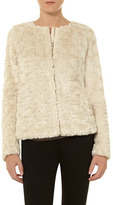 Dorothy Perkins Cream short zip faux fur jacket