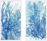 The Well Appointed House Set of Two Indigo Coral Framed Wall Art