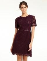 Morgan Lace Dress