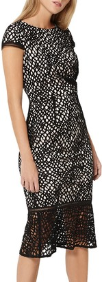 Damsel in a Dress Caspian Lace Dress, Black/Blush