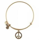 Alex and Ani Peace Bracelet