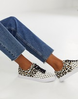 Asos Design DESIGN Dollis lace up sneakers in polka dot and leopard