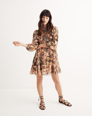 Madewell Karen Walker Fantasy Ruffled Print Dress