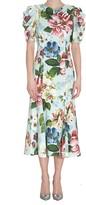 Dolce & Gabbana Cady Dress With Flower Print