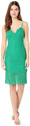 Bardot Sienna Lace Dress (Fern) Women's Dress