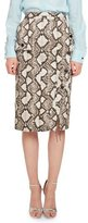 Altuzarra Curry Python-Print Pencil Skirt, Natural