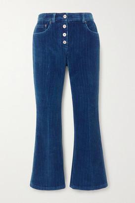 Miu Miu Cropped Flared Cotton-corduroy Pants - Blue