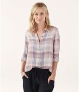 Splendid Brushed Button-Up Flannel