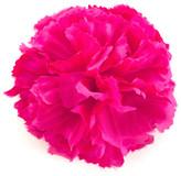 ban.do Pom Pom Berry Pink