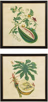 OKA Pair Of Melopepo Framed Prints
