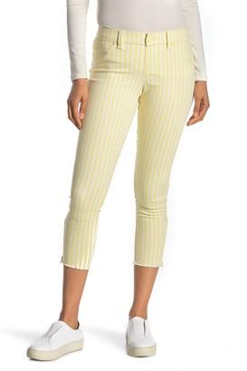 Hue Summer Stripe Jeans