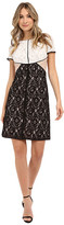 NUE by Shani A-Line Color Blocking Lace Dress w/ Piping Detail