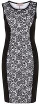 Dorothy Perkins Black illusion dress