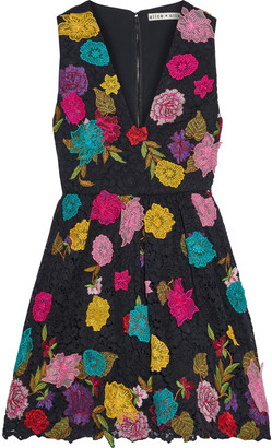Alice + Olivia Becca Floral-appliqued Embroidered Corded Lace Mini Dress