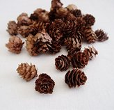 Stonewall Kitchen Hemlock Pine cones 3oz bag Small Pine cones Vase filler