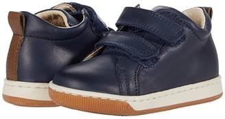 Naturino Falcotto Haley VL AW20 (Toddler) (Navy) Boy's Shoes