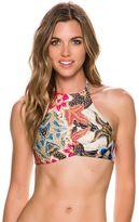 Beach Riot Lola Hi-Neck Bikini Top