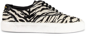 Saint Laurent Zebra Low Top Sneakers in Black & White   FWRD