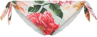 Dolce & Gabbana Camellia floral-print bikini briefs