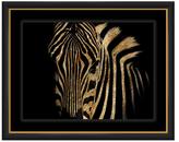 PTM Images Zebra Stripes II (Shadow Box Frame)