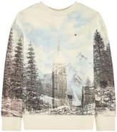 Tommy Hilfiger Graphic sweatshirt