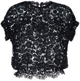 Aula lace detail ruffled sleeve top
