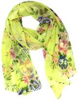 Tapp Collections Fashionable Solid Color Chiffon Scarf - Royal Blue