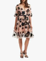 French Connection Josephine Floral Embroidery Mesh Dress, Ballet Blush/Black