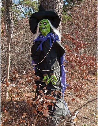 Asstd National Brand Tree Hugger Witch