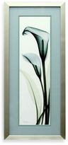 CALLA X-Ray Teal Lily Wall Art