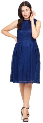 M&Co Izabel Curve layered fit and flare dress