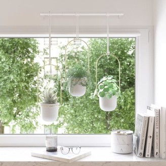 Umbra Triflora Hanging Planter System White Brass
