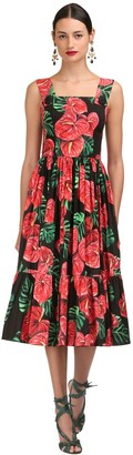 Dolce & Gabbana Floral Printed Stretch Poplin Midi Dress