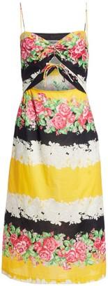 Rachel Comey Chernist Floral Stripe Midi Dress