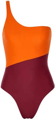 Magda Casa Raki Two-tone One-shoulder Swimsuit