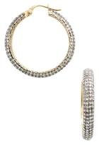 Amrapali 14K Yellow gold & 5.50 Total Ct. Diamond Hoop Earrings