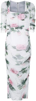 Dolce & Gabbana Tropical Rose-print tulle midi-dress