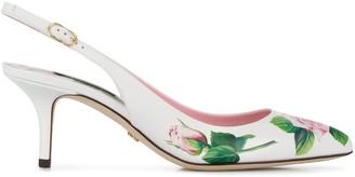 Dolce & Gabbana Tropical Rose 60m slingback pumps