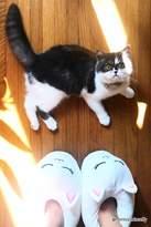 Forever 21 Cat Face Fleece Slippers