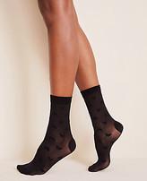 Ann Taylor Butterfly Trouser Socks