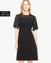 Ann Taylor Petite Circle Lace Yoke Flare Dress