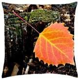 "iRocket - The Autumn - Throw Pillow Cover (20"" x 20"", 50cm x 50cm)"
