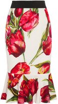Dolce & Gabbana Fluted Floral-print Stretch-silk Skirt - Red