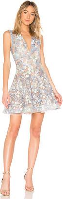 Bronx and Banco Butterfly Mini Dress
