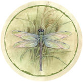 Thirstystone Dragonfly Set of 4 Coasters